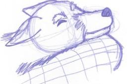 Animal Life Drawing Sleepy Puppie