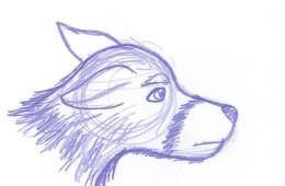 Animal Life Drawing 01