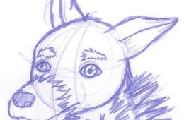 Animal Life Drawing 03